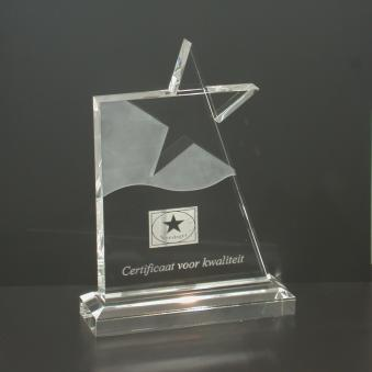 Waving Star Award (C911M)